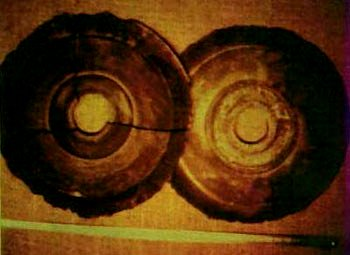 Photo of the Alleged Dropa Stone Discs