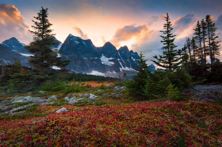 2.) Tonquin Valley - hiking trails