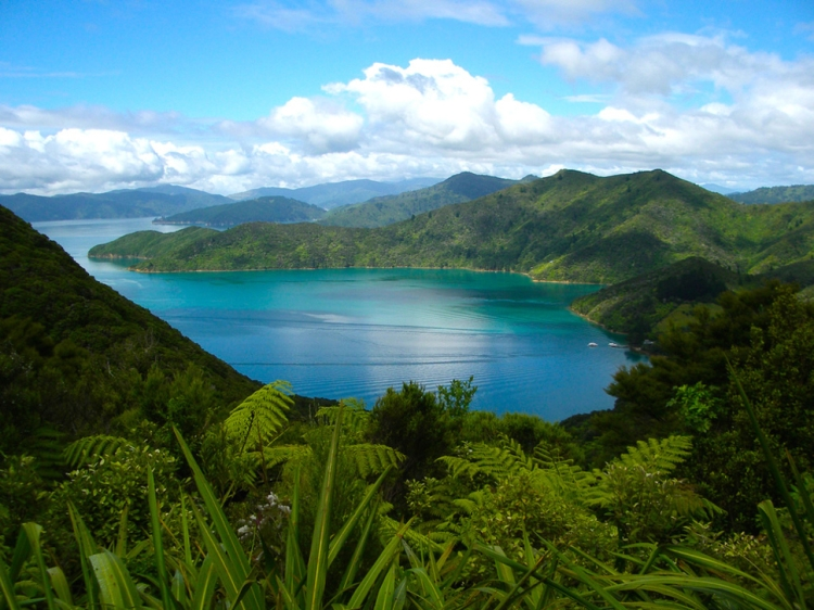 20.) Queen Charlotte Track