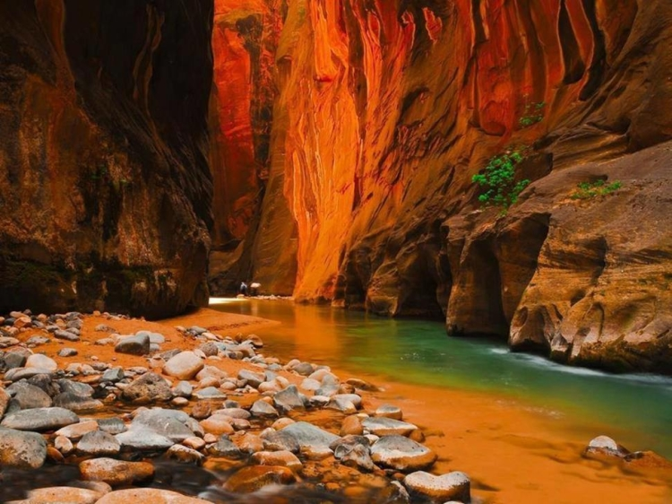 21.) Zion Narrows