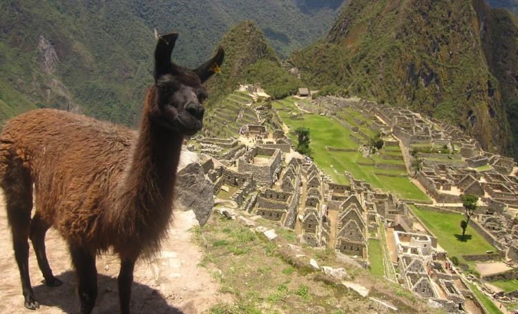 5.) Inca Trail to Machu Picchu