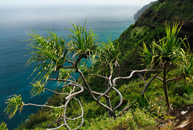 14 - 25 Most Treacherous Hiking Trails in the World - Kalalau Trail, Hawaii