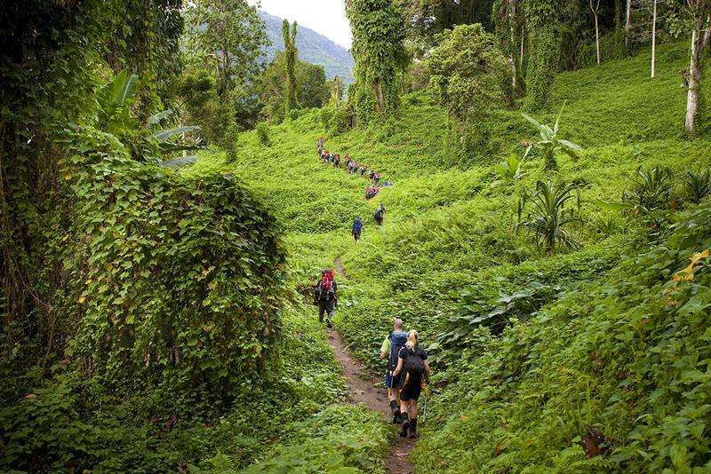 19 - 25 Most Treacherous Hiking Trails in the World - Kokoda Trail, Papua New Guinea