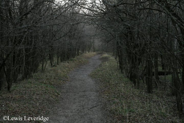 5 - River Legacy Park - 10 Most Haunted Hikes in Texas