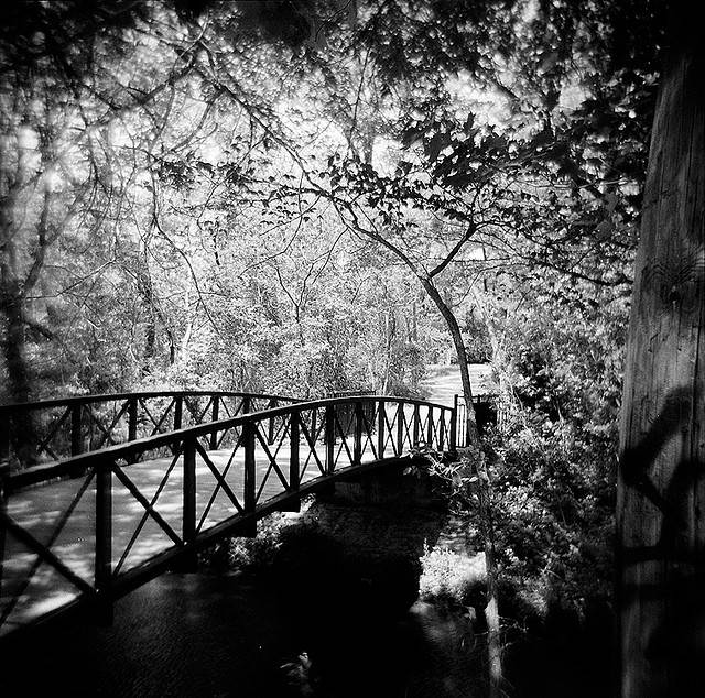 9 - White Rock Lake - 10 Most Haunted Hikes in Texas
