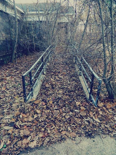 Letchworth Village – Ramp Leaves- 10 Most Haunted Hikes In New York