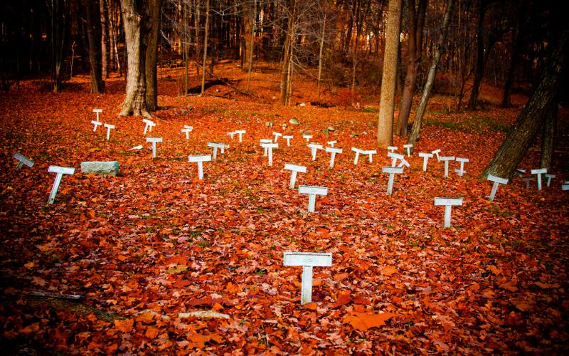 Orange Leaves Graves- 10 Most Haunted Hikes In New York