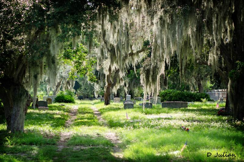 5 - Merritt Island - 10 Most Haunted Hikes in Florida