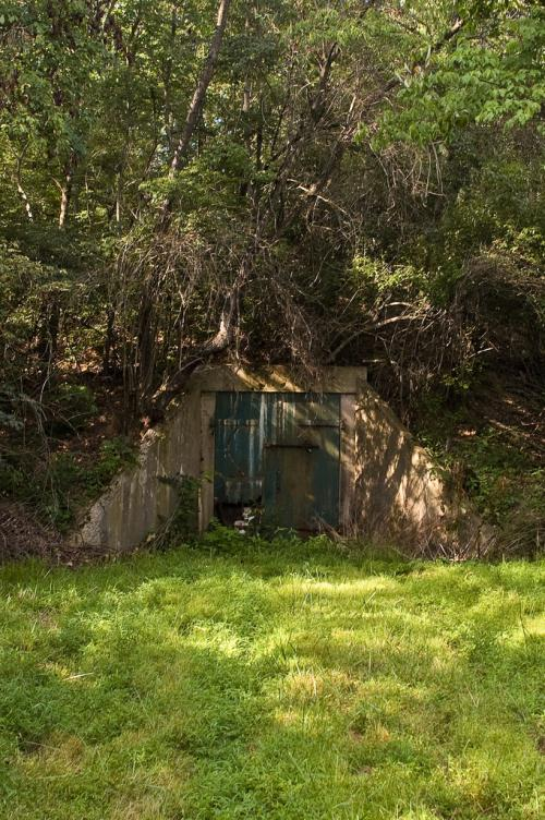 1 - Allenwood Forest - 10 Most Haunted Hikes in Pennsylvania