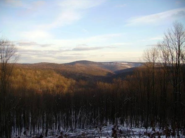 4 - Mudlick Hollow - 10 Most Haunted Hikes in Pennsylvania