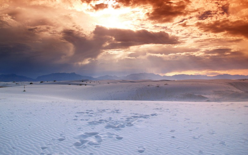 31) New Mexico  - White Sands White Sands National Monument - Haunted Hiking Trails 50 States