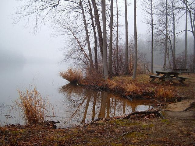 8) Delaware - Lums Pond Lums Pond State Park - Haunted Hiking Trails 50 States