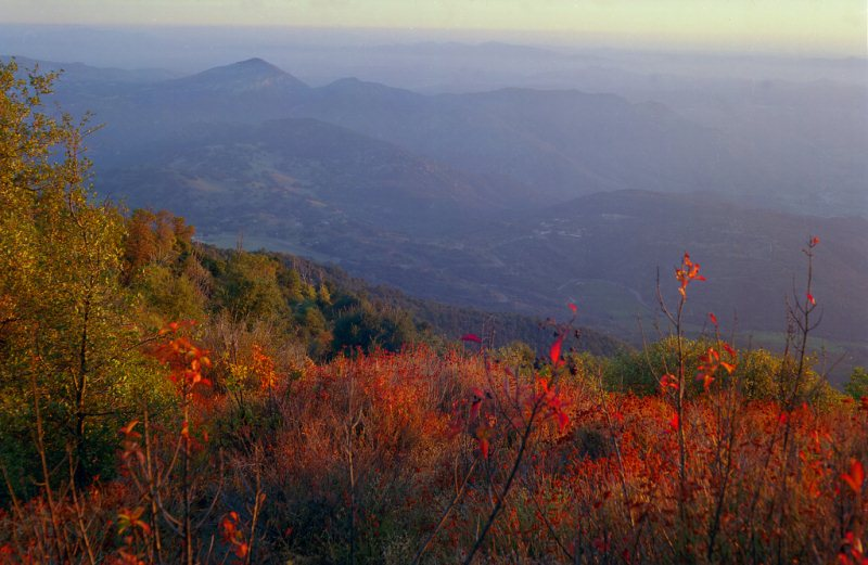 9) Palomar Mountain, San Diego County - 10 Out Of This World Hiking Trips In California