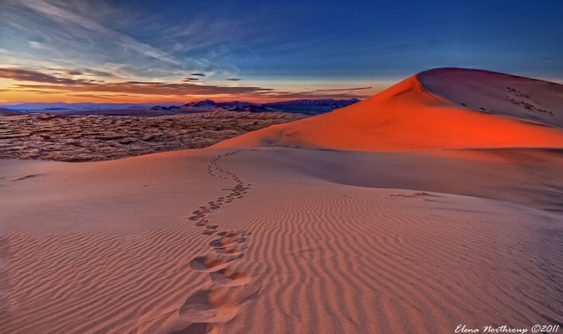 8) Kelso Dunes, Mojave National Preserve - 10 Unique Weekend Hiking Trips In California
