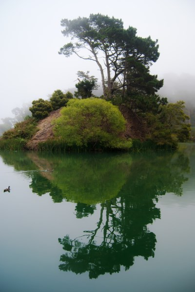 10) Golden Gate Park - 10 Most Haunted Hikes in Northern California
