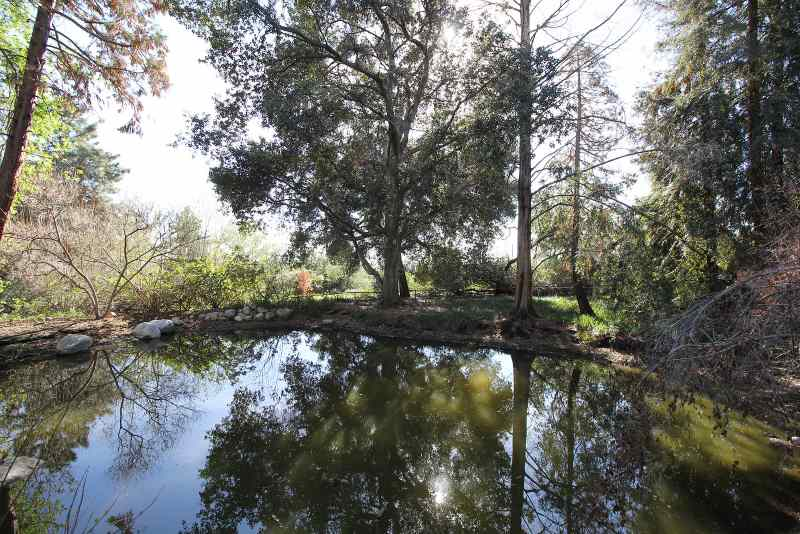 Rancho Santa Ana Botanic Garden in Claremont
