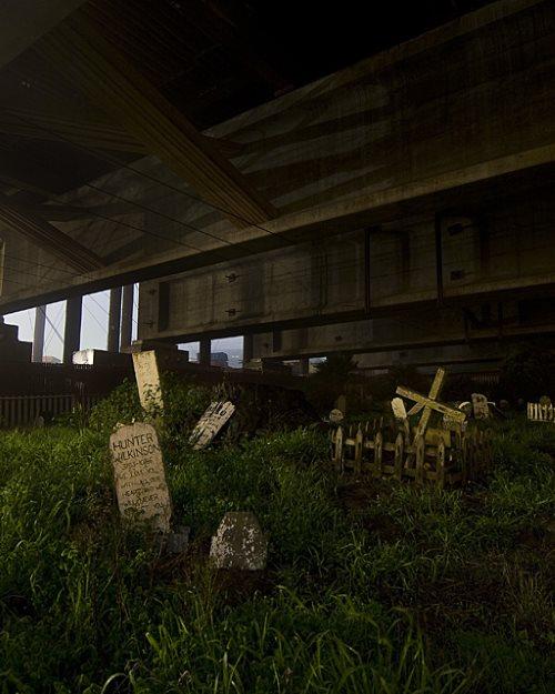 Pet Cemetery in the San Francisco Presidio2