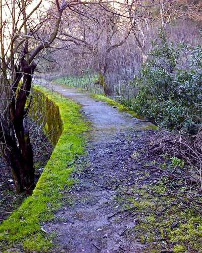 Haunted Hiking Trails Niles Canyon in Fremont
