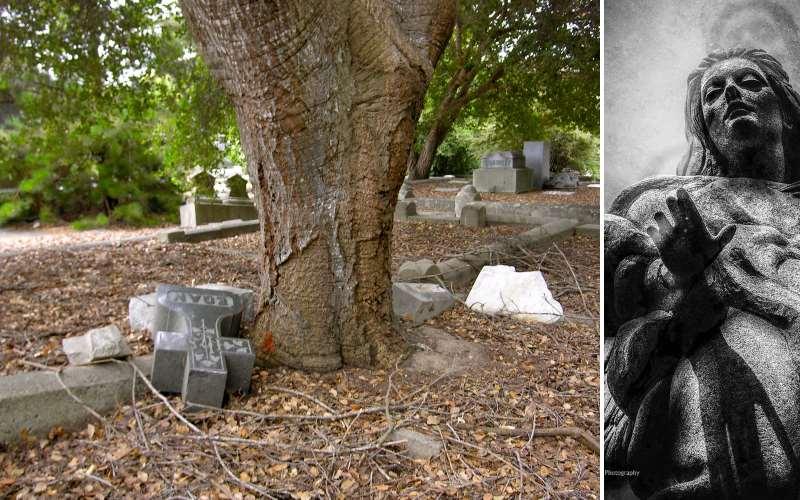 The Angry Entities of the Santa Cruz Memorial