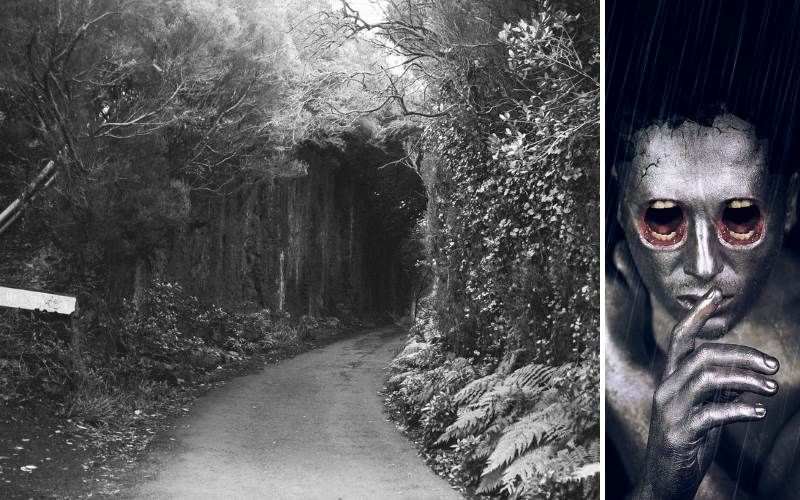 10 Sonoma County Hiking Trails with Insane Paranormal Activity