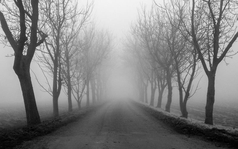10 Scariest Haunted Roads In Northern California