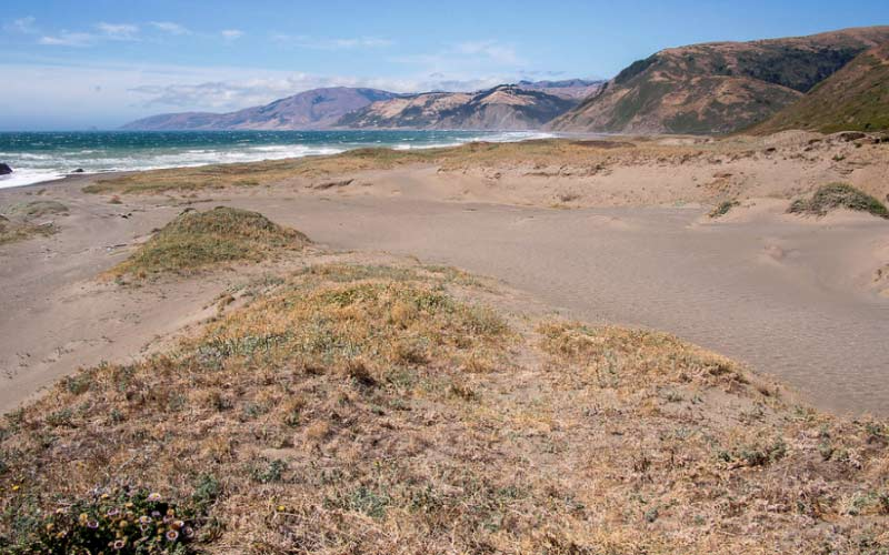 You can visit the dunes along this trail in Petrolia, but maybe don't go alone.