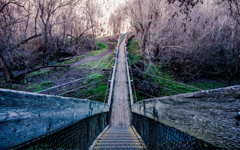 7 Paranormal Trails You Must Hike in Northern California Before You Die