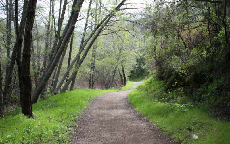 Care to venture along the trail at Mount Diablo? They don't call it that for nothing. San Francisco's most haunted trail.