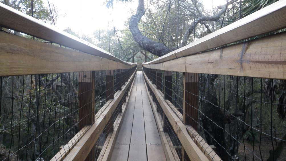 People crossing this bridge have said that it feels like it goes on forever. & 7 Trails in Florida You Must Take If You Love the Paranormal