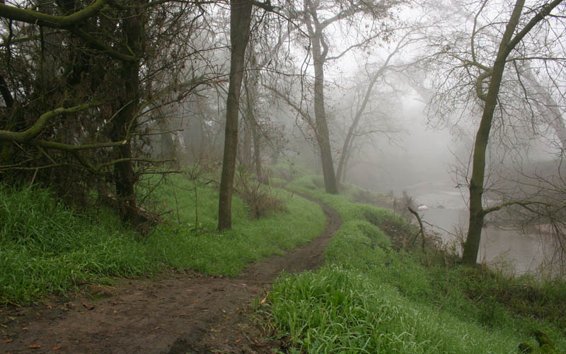 The Ghost Of A Dead Boy Haunts This California Hiking Trail