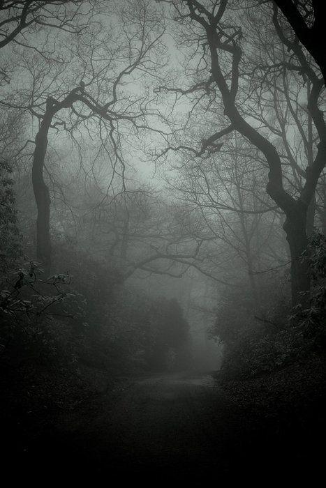 A Figure in the Dark
