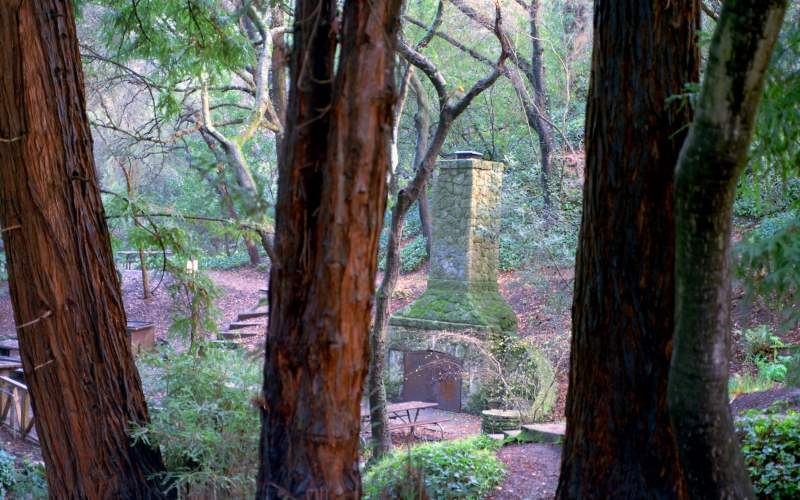 Native American Spirits Lurk at Live Oak Park in Berkeley