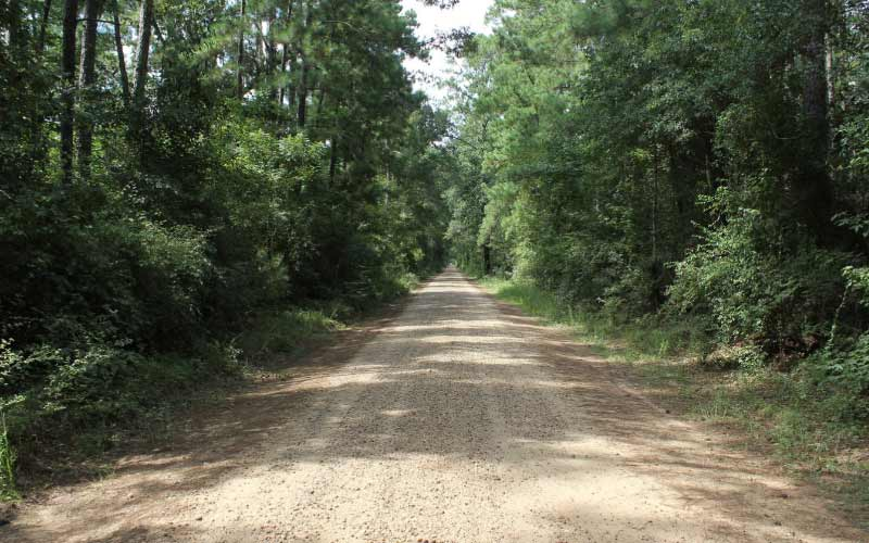 The Bragg Road lights in Saratoga, TX are notorious, often spotted, and completely unexplained.