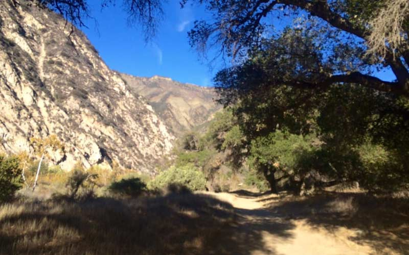 Santa Barbara isn't usually regarded as one of the most haunted places in California, but a visit to Los Padres National Forest could change many minds.