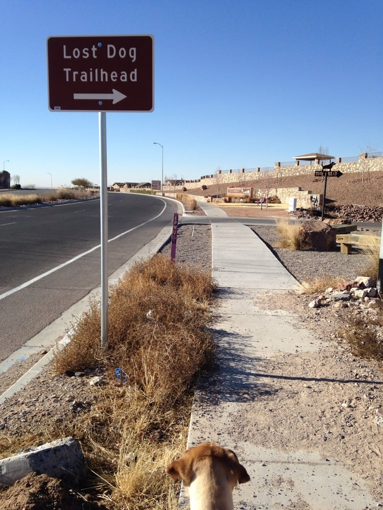 The Lost Dog Trailhead is actually said to be haunted by some runaway pups who went missing in El Paso, Texas.