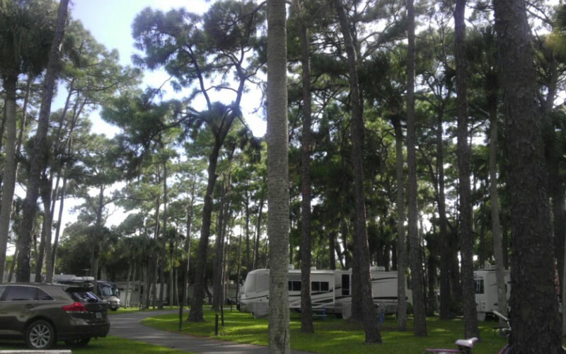 So, you've never been to the Royal Coachmen RV Resort in Nokomis, Florida? Why not? You're not afraid, are you?