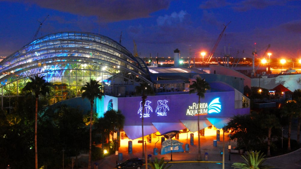 The Florida Aquarium has stuff to do for the entire family, but keep the kids away from the ghosts if you can, okay?