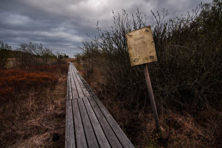 The 7 Best Hiking Trails in Texas to See a Ghost