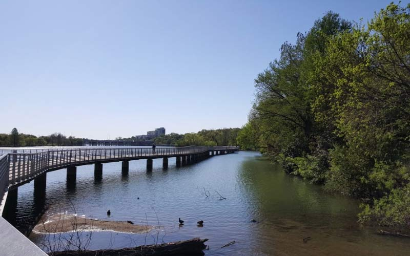 Lady Bird Lake in Austin, TX is not a far trip to get some fresh air and enjoy nature.