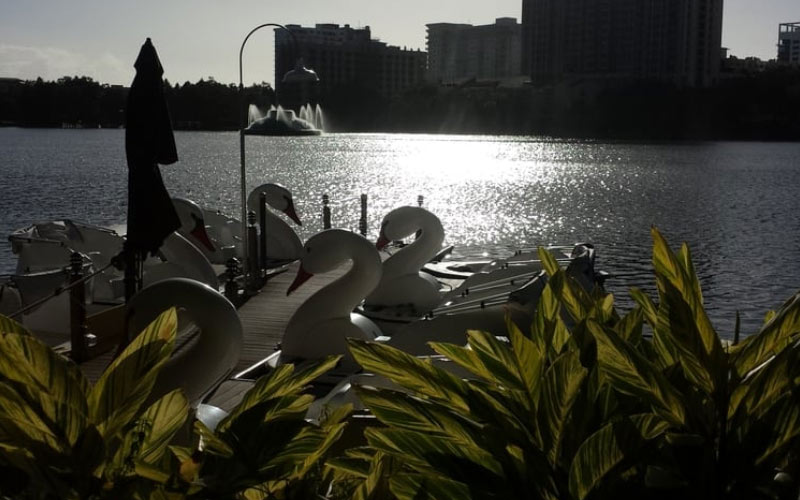 Orlando isn't the first place that comes to mind when you think of ghosts and maddened spirits, but if you visit Lake Eola in Florida, that will change.