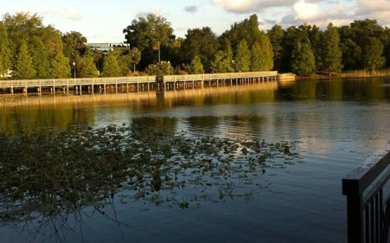 Lake Lily in Maitland, FL is home to many recent sightings of misty apparitions.