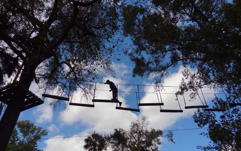 Zoom Air in Daytona Beach is high-flying fun, but there may be a sinister surprise waiting in these Florida trees.
