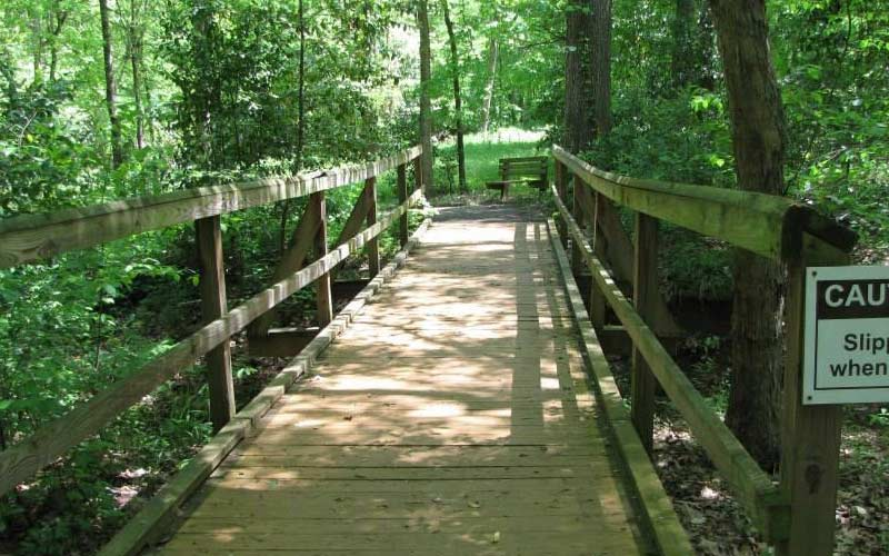 Piney Woods Native Plant Center in Nacogdoches, TX has a lot of areas to explore, see what you run into...