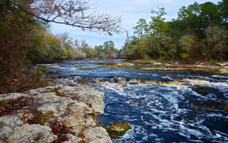 Big Shoals State Park – White Springs