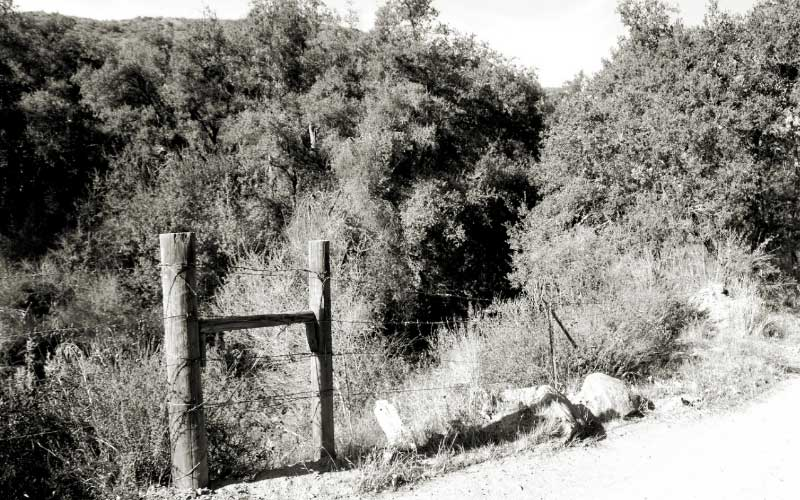 Black Star Canyon in Orange County, California is haunted in so many difference ways.