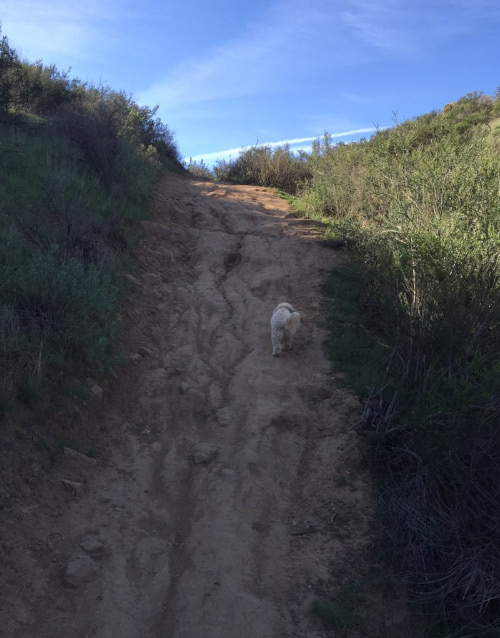 Simi Valley is home to numerous bike trails, are you looking for the most haunted? Be careful.