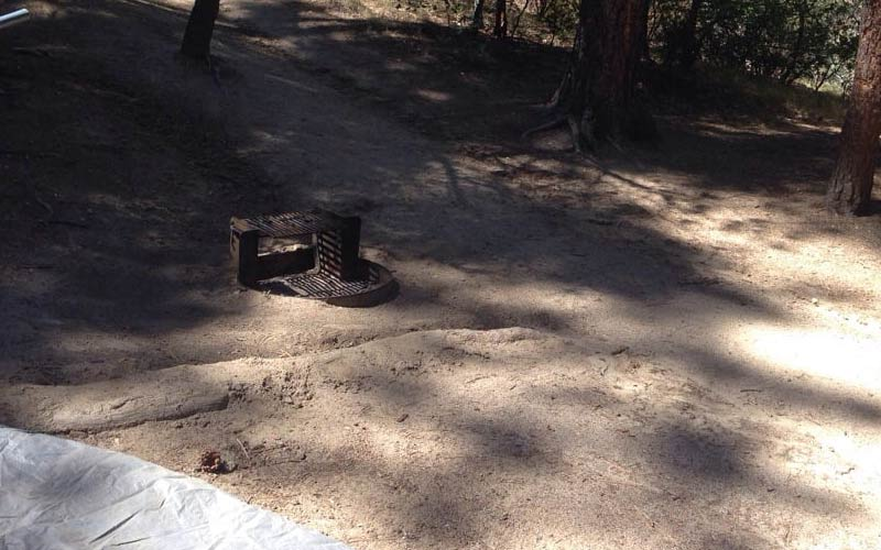 Take a trip down the suicide trails of Idyllwild County Park.