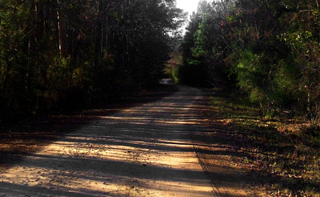 Bowden Road is also known as Demon Road, and if youve spent any time at this haunted Huntsville location, you already know why.