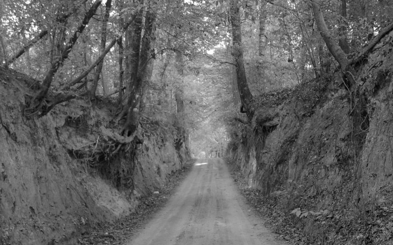 Stagecoach Road in Marshall Texas is more haunted than even the most paranoid visitors could ever even imagine.