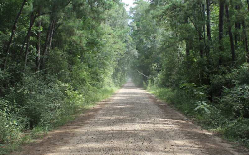 Bragg Road in Saratoga, Texas is beyond the pale, and will leave you pale in the face if you encounter one of the countless spirits.